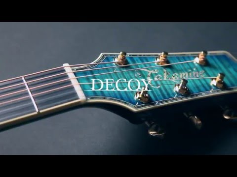 LTD2016 DECOY [ HEAD ]