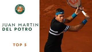 Juan Martin Del Potro - TOP 5 | Roland Garros 2018