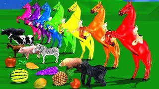 Funny Animals Eating Fruits For Kids | 3D Nursery Rhymes For Childrens