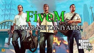 FiveM - Veritabanı Hakkında Herşey