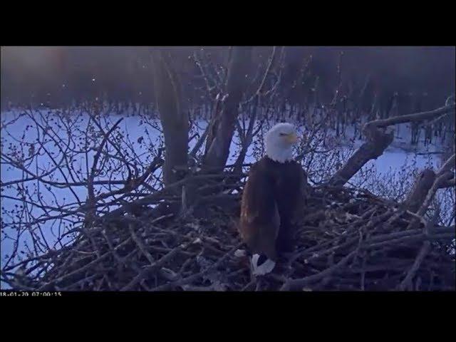 trio-eagle-nest-stewards-umrr-injured-visitor-spends-night-valor-chases-off-1-20-18