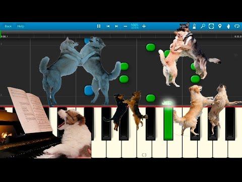 Собачий Вальс (на пианино Synthesia)