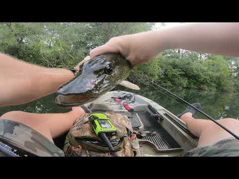 WHERE IS THIS SPOT? BASS & PIKE FISHING CANADA ONTARIO