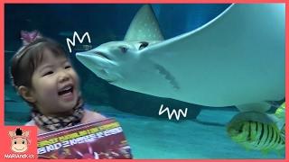 꾸러기 유니 아쿠아리움 가서 상어가족 만났어요! 즐거운 물고기 친구들 놀이 ♡ 인어공주 악어 거북이 펭귄 바다 물놀이 kid aquarium | 말이야와아이들 MariAndKids