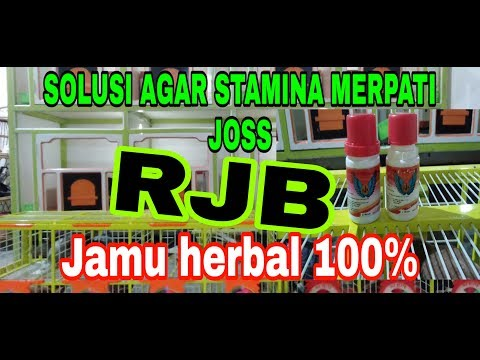 Jamu Merpati RJB 100% Herbal