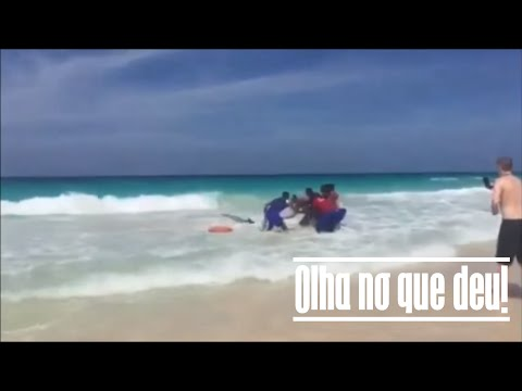 Moment People get shark out of water in Dominican Republic | Olha no que deu!