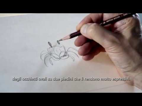 La Tartaruga Rossa   M. Dudok De Wit spiega come disegnare i granchi