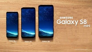 Samsung to Launch a Galaxy S8 Mini?