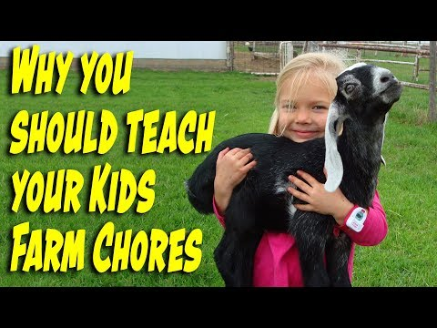 Why You Should Teach Your Kids Farm Chores
