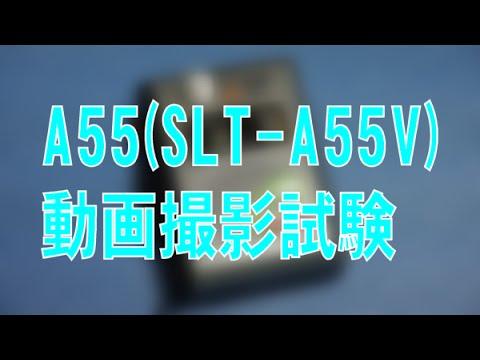 α55(SLT-A55V)の動画撮影試験 [SIGMA 17-70mm F2.8-4.5 DC MACRO]