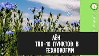 Лён. ТОП-10 пунктов в технологии выращивания льна