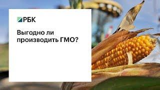 Выгодно ли производить ГМО?