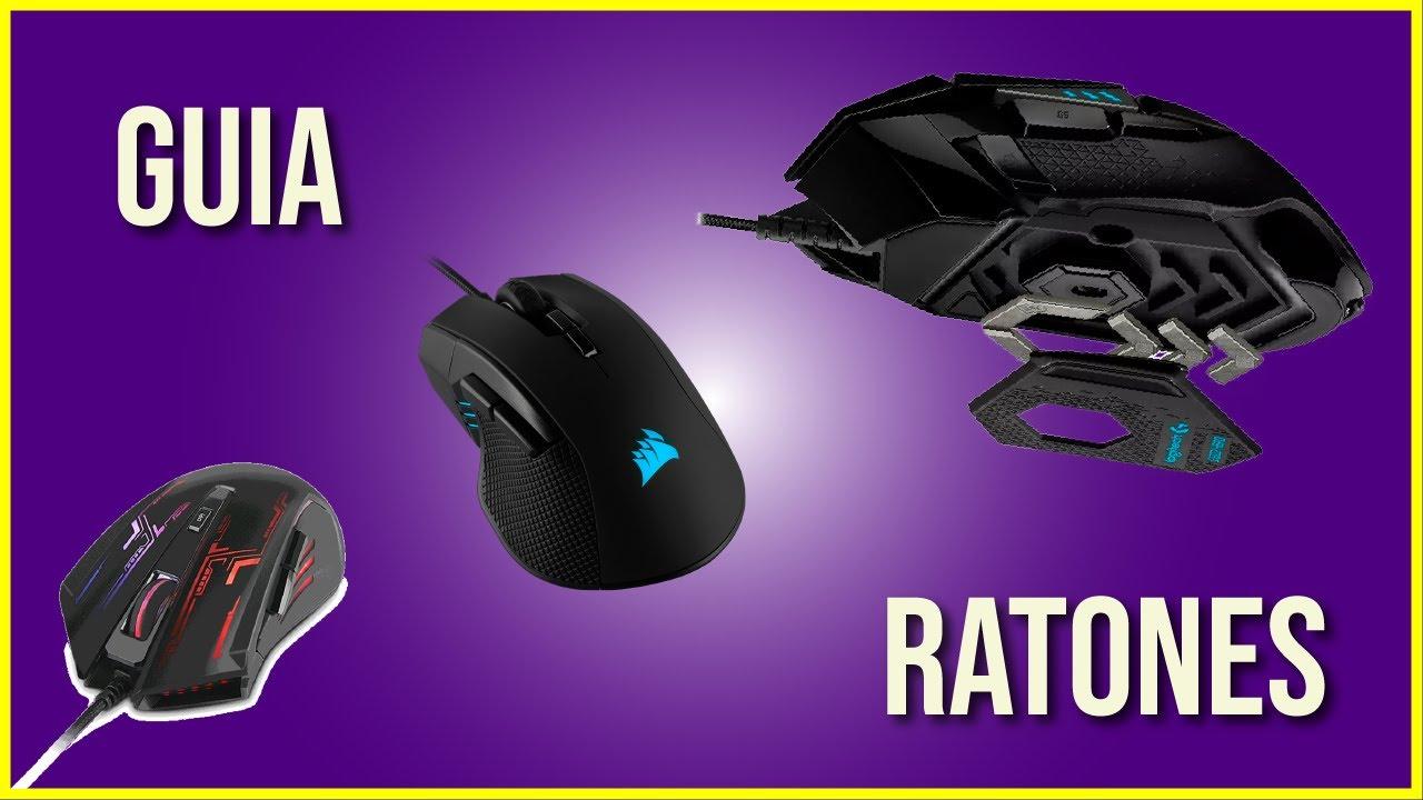 GUIA RÁPIDA DE RATONES! (CON RECOMENDACIONES)