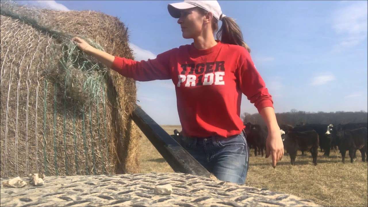 Farm Girl Friday 63 How To Load Hay Using A Bale Bed -2789