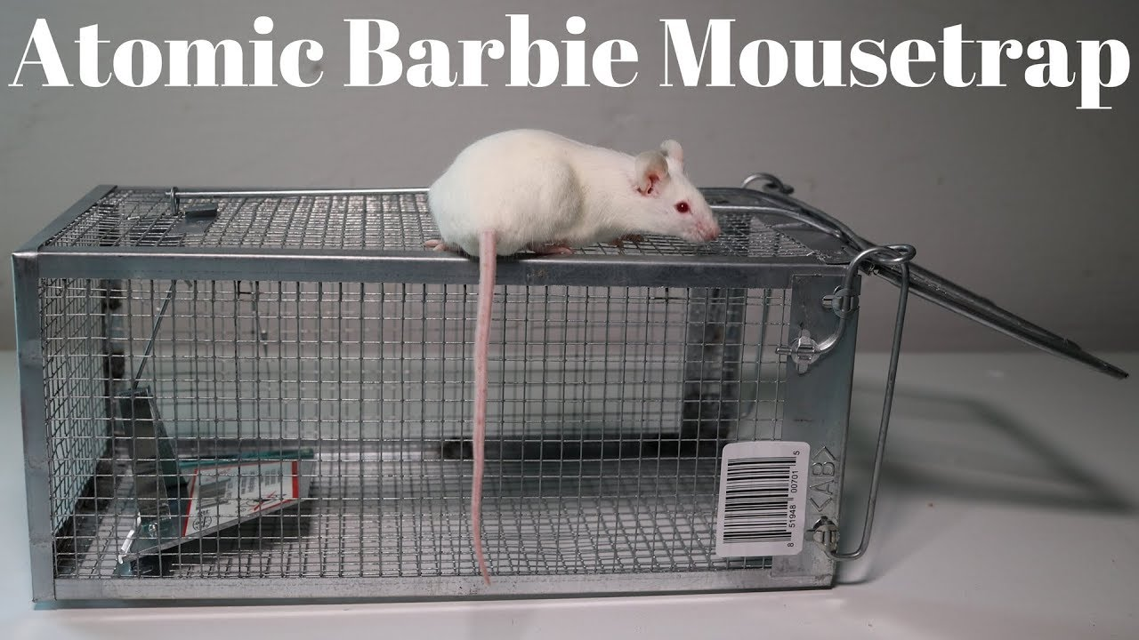 atomic-barbie-trap-catching-mice-squirrels