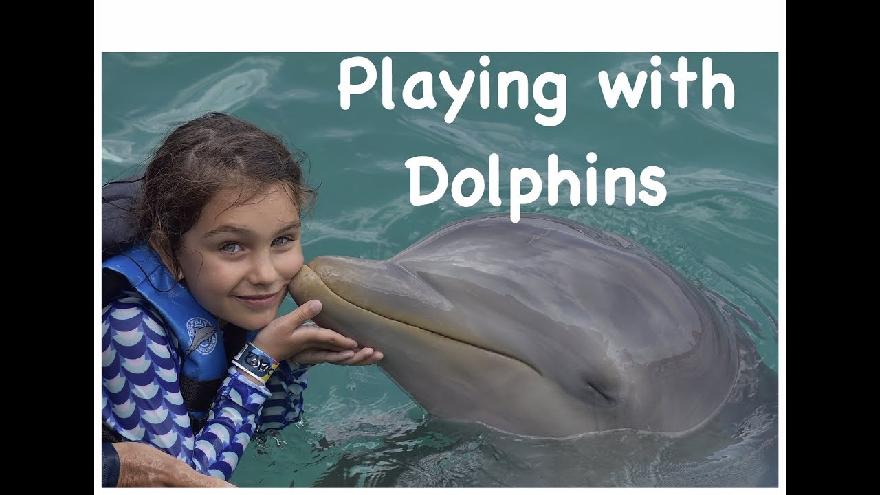Playing with Dolphins Isla Mujeres Dolphin Discovery Cancun Mexico