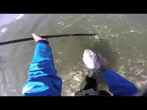 Strand reef fishing: Fishing for Kob
