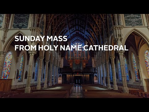 Catholic Church Admits They Made the Change of Sabbath from YouTube · Duration:  3 minutes 57 seconds