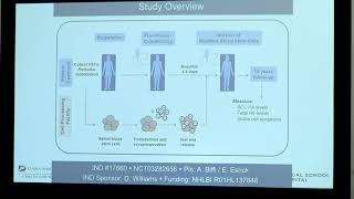 Genetic targeting in sickle cell disease
