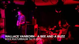 Wallace Vanborn - A Bee And A Buzz - Live KOHI 14.11.2014
