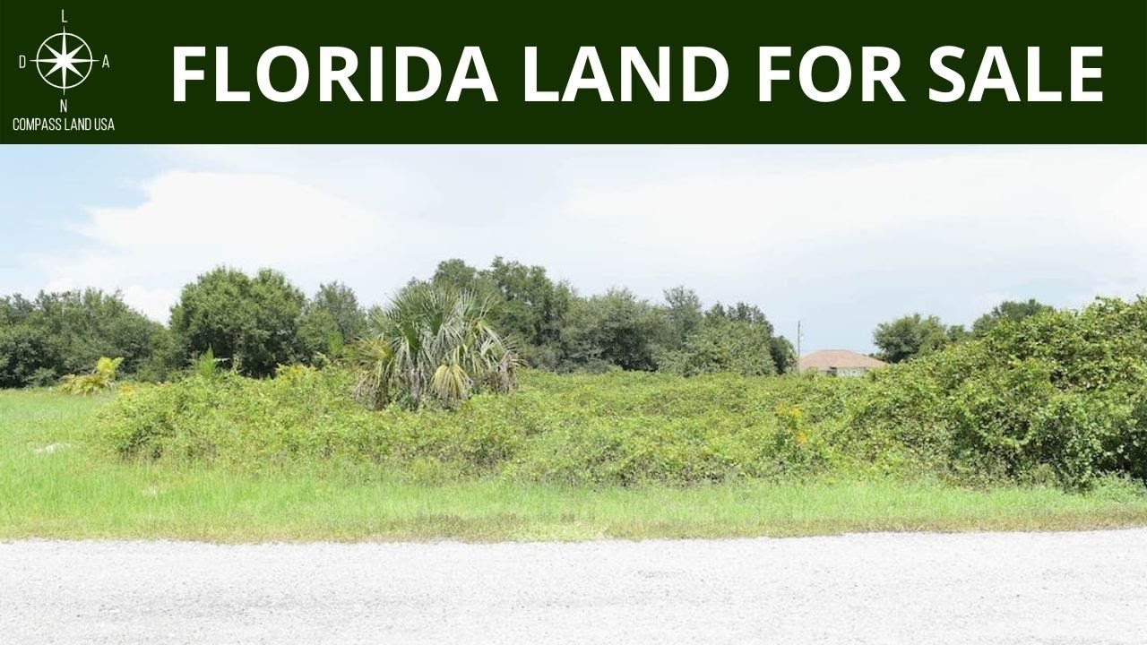 0.46 Acres - With Power! In Port Charlotte, Charlotte County Florida