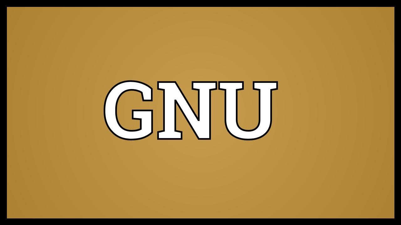 GNU Meaning - YouTube