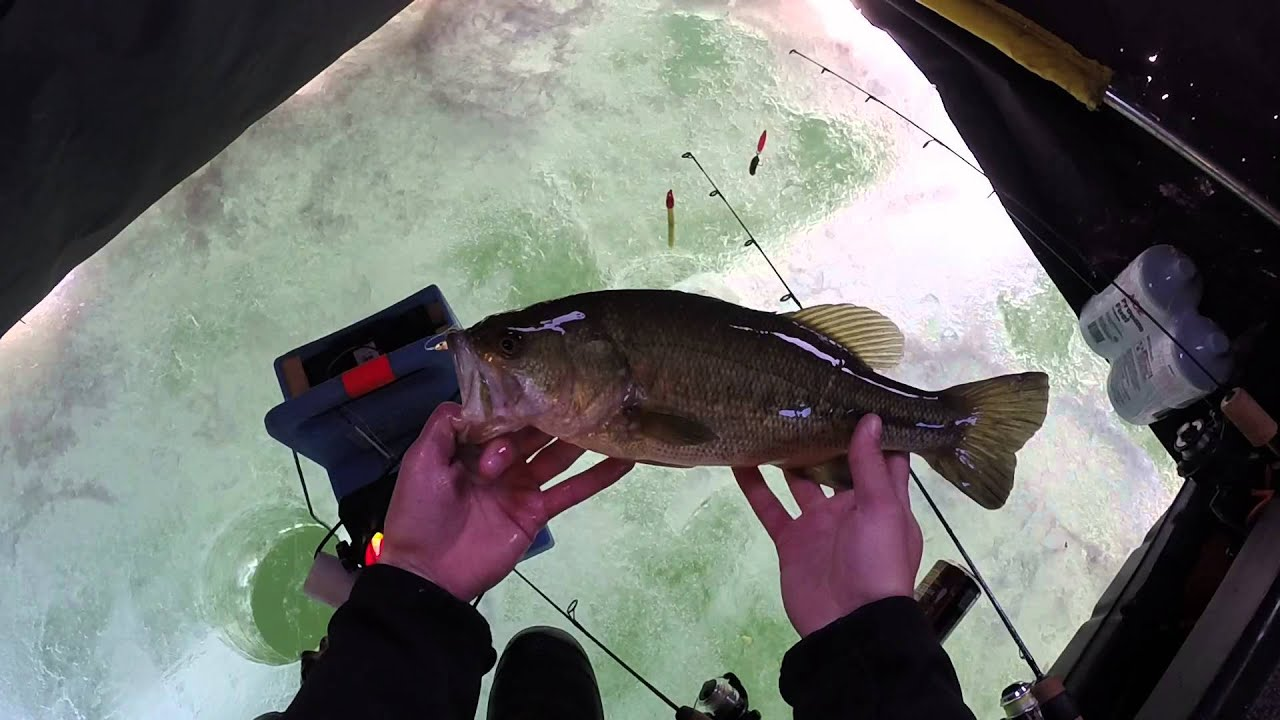 Gopro ice fishing 2 bass at the same time youtube for Mn ice fishing regulations
