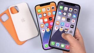 iPhone 12 vs 12 Pro: Which Display is Best? (Analysis)