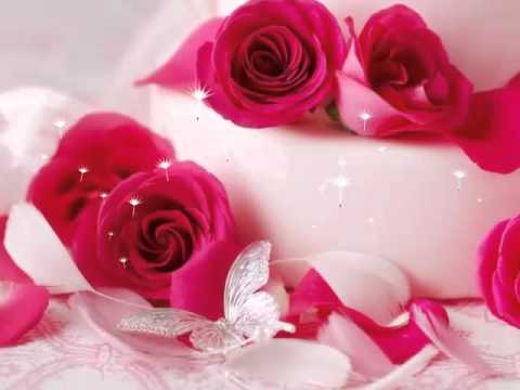 Most beautiful flowers wallpaper youtube most beautiful flowers wallpaper mightylinksfo