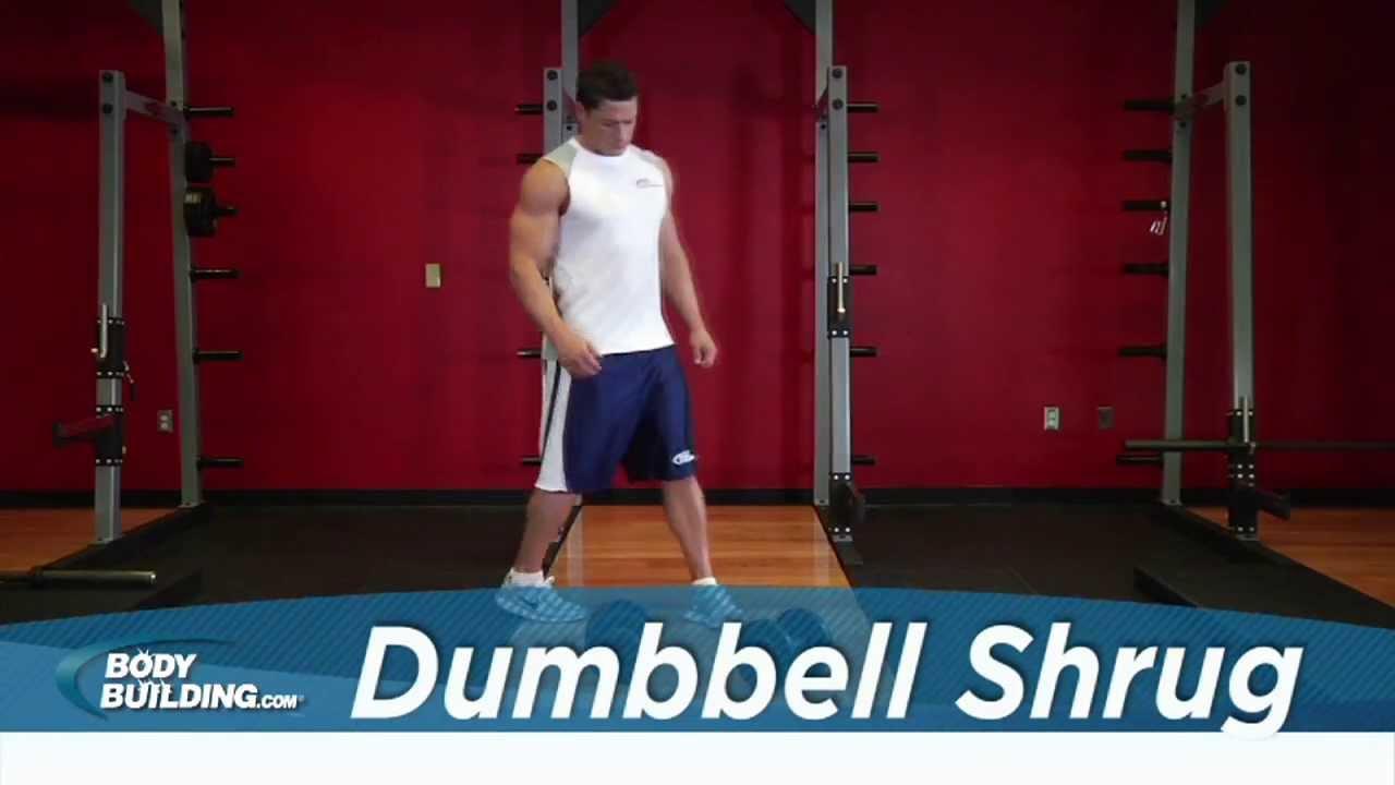 The Dumbbell Shrug Exercise