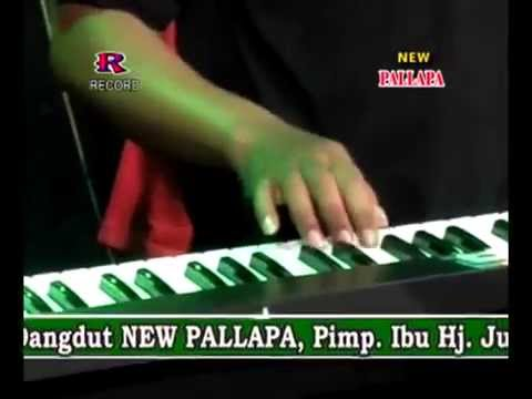 Kanggo Riko   Wiwik Sagita   New Pallapa  Menganti 2015