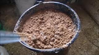 Как самостоятельно сделать ферментированный корм для животных