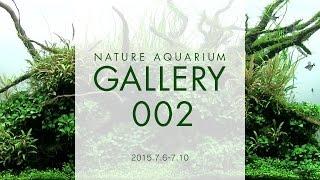 [adaview] Nature Aquarium Gallery#002(en)