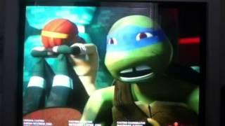Teenage gay turtles