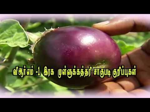 pon-vilaiyum-bhoomi-12/04/2018