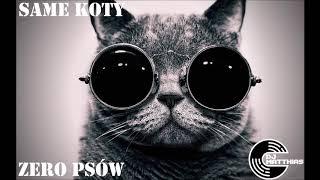 Same koty zero psów! VIXA ATTACK vol. 13 DJ Matthias
