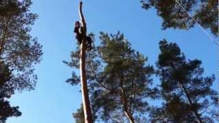 пилим деревья по средствам альпинизма(, 2013-03-19T09:27:50.000Z)