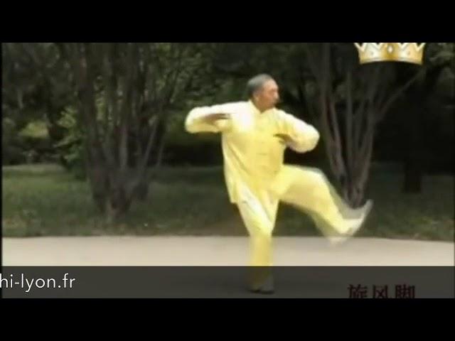 Tian Jian Hua - Tai Chi style Chen Xinjia Yilu  [陈氏太极拳新架 Taijiquan style Chen]
