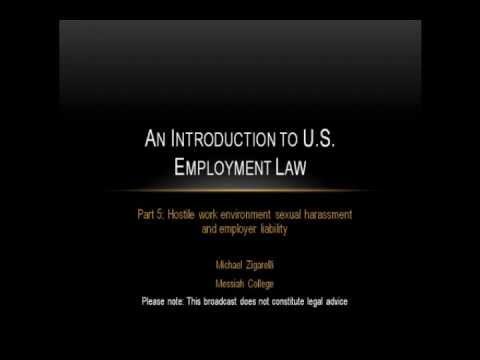 An Introduction to US Employment Law (part 5)
