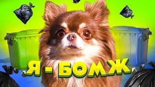 Короче говоря Я БОМЖ Глазами собаки блогера Миши