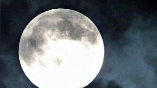Full Buck Moon Time-lapse - July 11, 2014