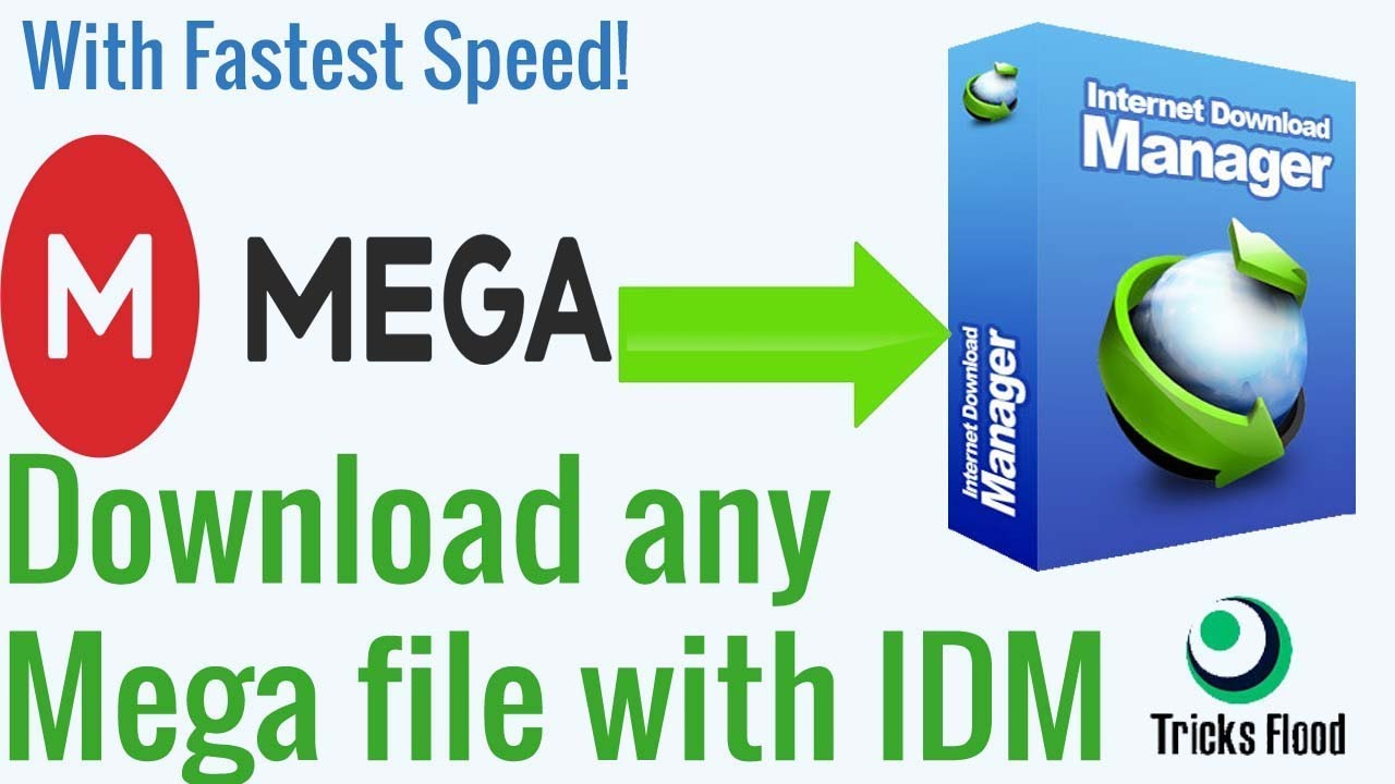 How to download mega files without mega