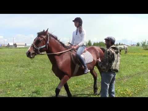 Сернур. Н.Петухов учит ребят верховой езде на лошадях