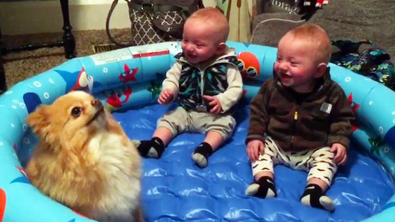 Funny Twin Babies Laughing Hysterically