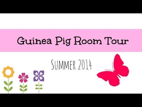 Guinea Pig Room Tour | Summer 2014 ☀