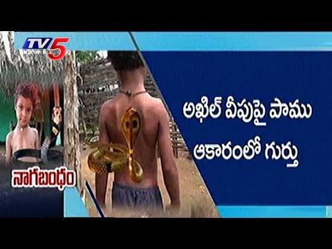 ఈ చిన్నారిది పున్నమి నాగులో చిరంజీవి పరిస్థితి !! | Snake Haunts Boy | Nijam | TV5 News