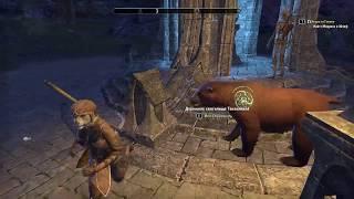 """Запись стрима по игре """"The Elder Scrolls Online"""" (""""Старейшие свитки Онлайн"""") #8"""