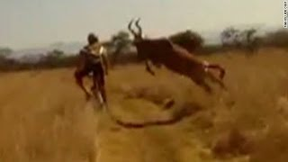 Survival of the fittest: Antelope vs. Cyclist edition