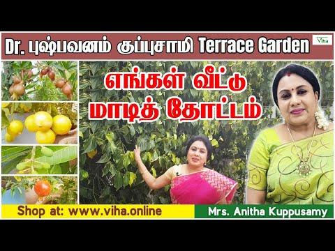 எங்கள் வீட்டு மாடித் தோட்டம்/ Dr புஷ்பவனம் குப்புசாமி  அனிதா குப்புசாமி/छत पर बागवानी/Terrace Garden