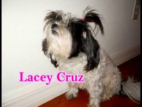 Agree, lacey cruz